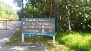 JN Darling Wildlife Entrance Fees