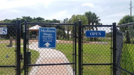 Lake Worth Dog Park Medium Dog area John Prince Park