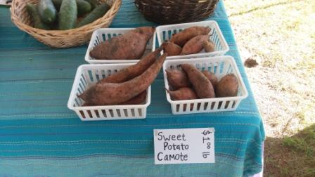 Westgate Greenmarket Sweet Potatoes