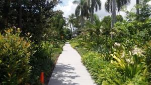 Norton Museum Garden
